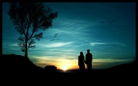 Sunset minimalistic trees silhouette couple romantic blue skies wallpaper