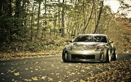 Trees cars leaves roads vehicles nissan 350z wallpaper