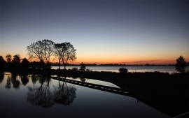 Trees dark lakes reflections hebus website wallpaper
