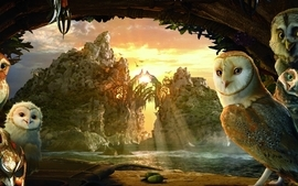 Water birds owls lakes cavern wallpaper