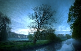 Water landscapes trees outdoors hdr photography wallpaper