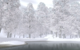 Water nature snow trees cgi render wolves wallpaper