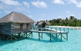 Water ocean palm maldives islands villa wallpaper