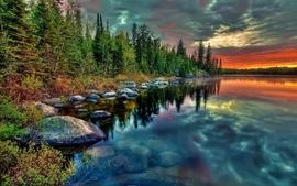 Water sunset forest wallpaper
