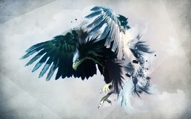 Wings birds eagles artwork wallpaper