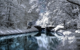 Winter bridges wallpaper