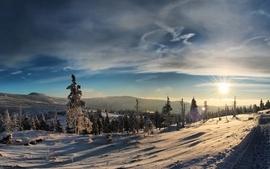 Winter evening wallpaper