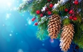 Winter trees pinecones wallpaper