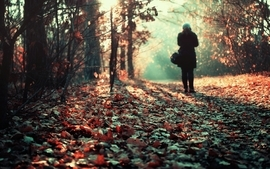 Women nature autumn forest leaves lonely fallen leaves wallpaper