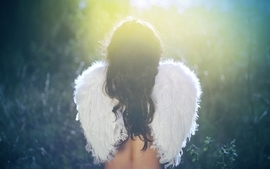 Women wings back angel wallpaper