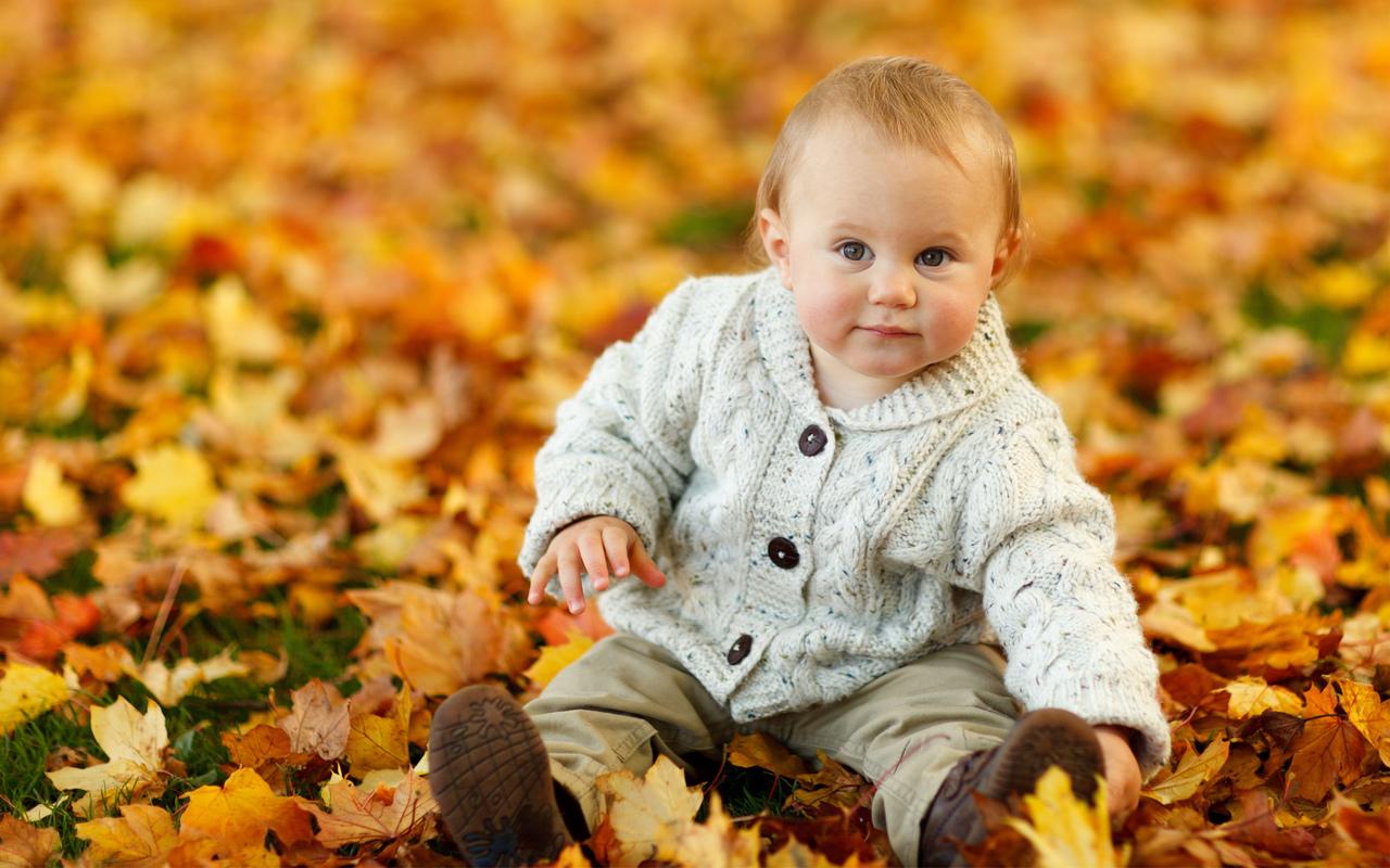 Cute Baby Boy Autumn Leaves (1280x800)