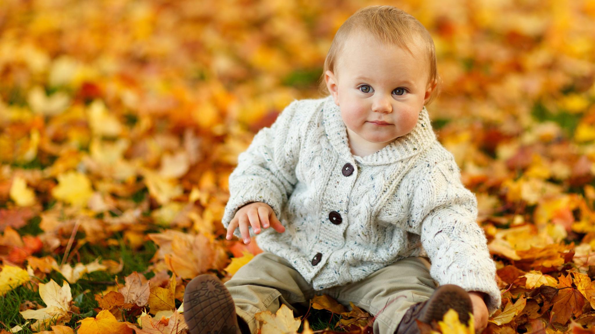 Cute Baby Boy Autumn Leaves (2048x1152)