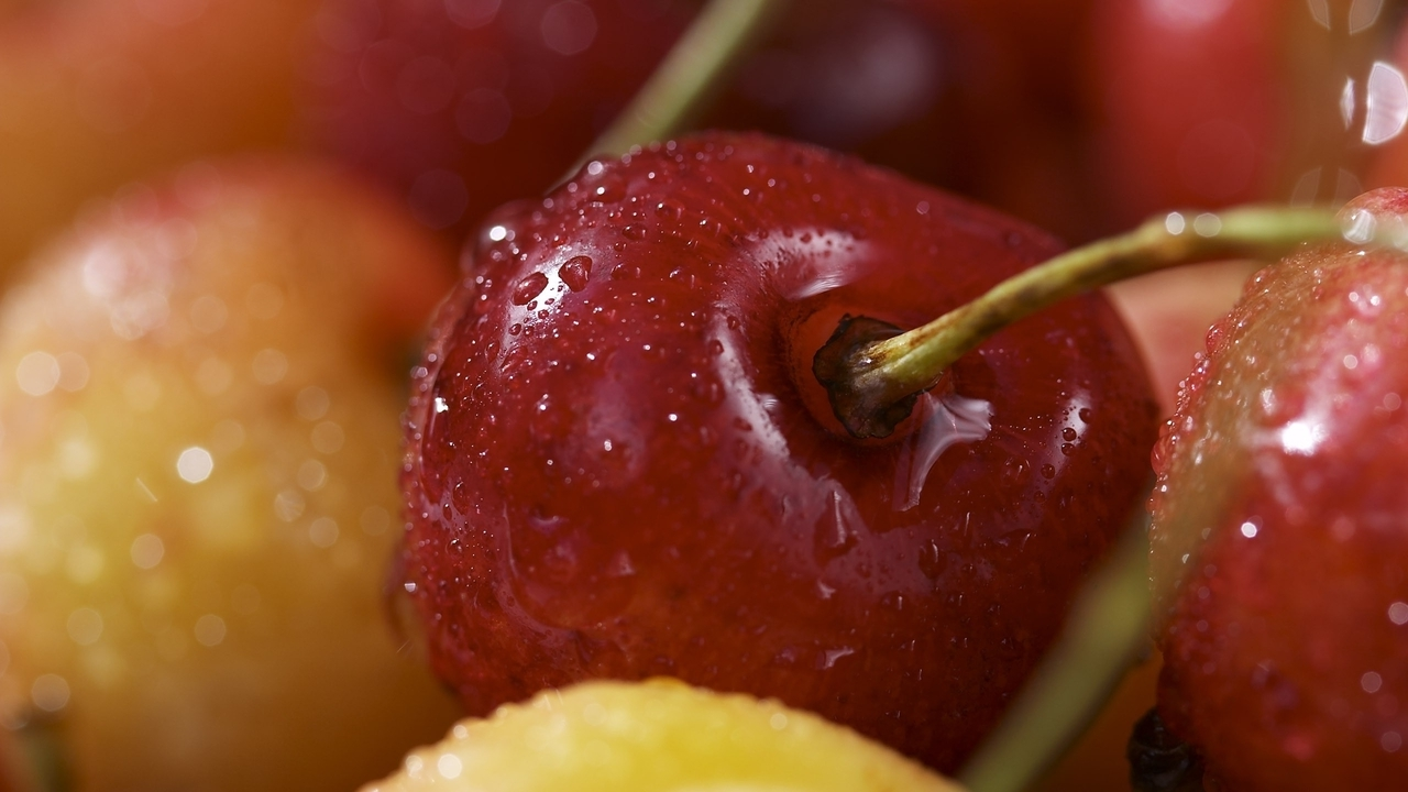 Fruits cherries macro berries (1280x720)