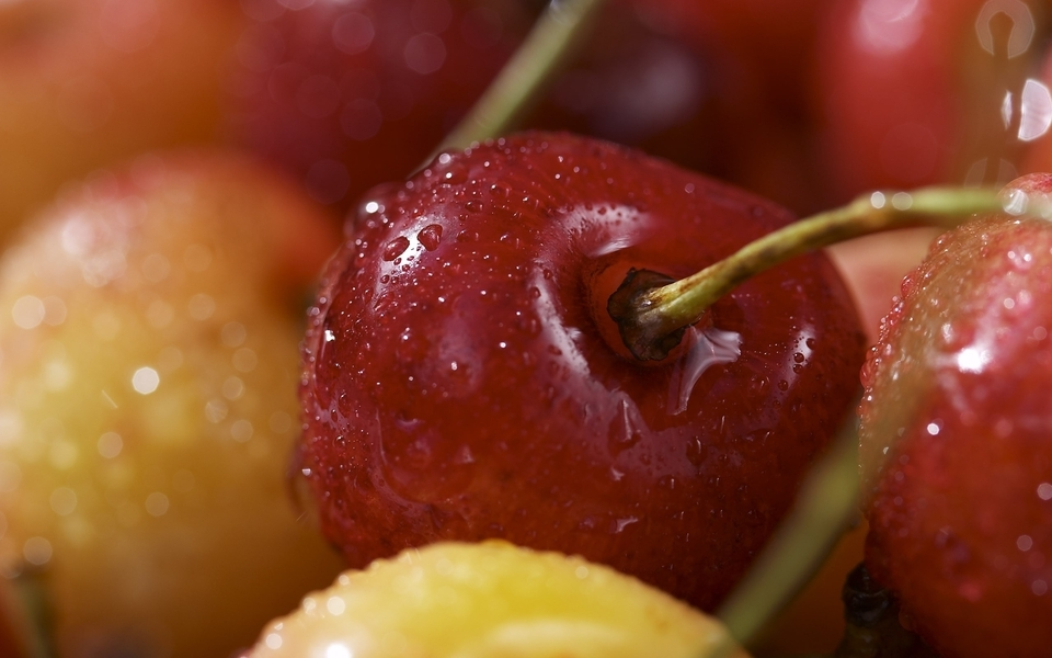 Fruits cherries macro berries (960x600)