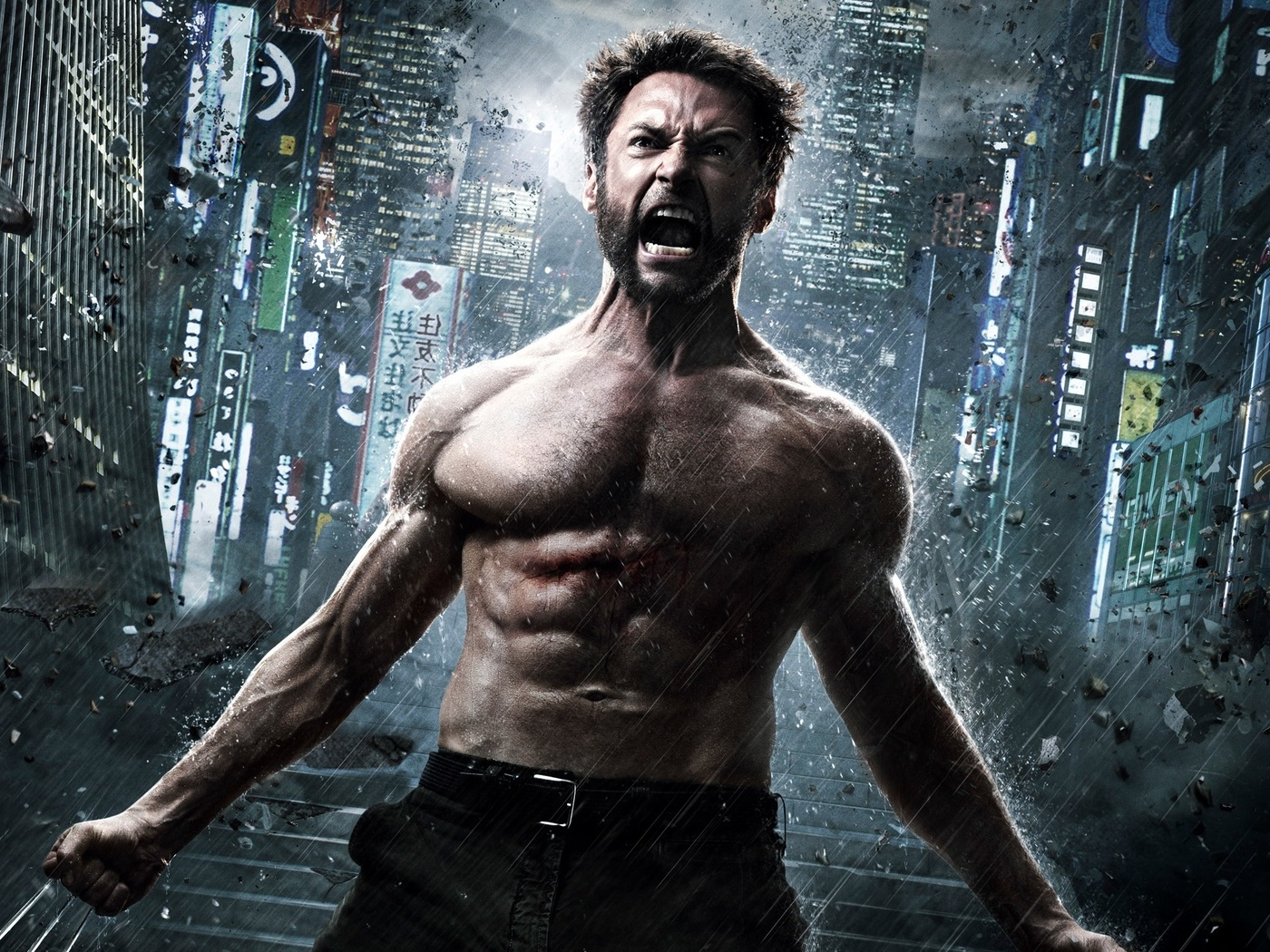 The Wolverine 2013 (1400x1050)
