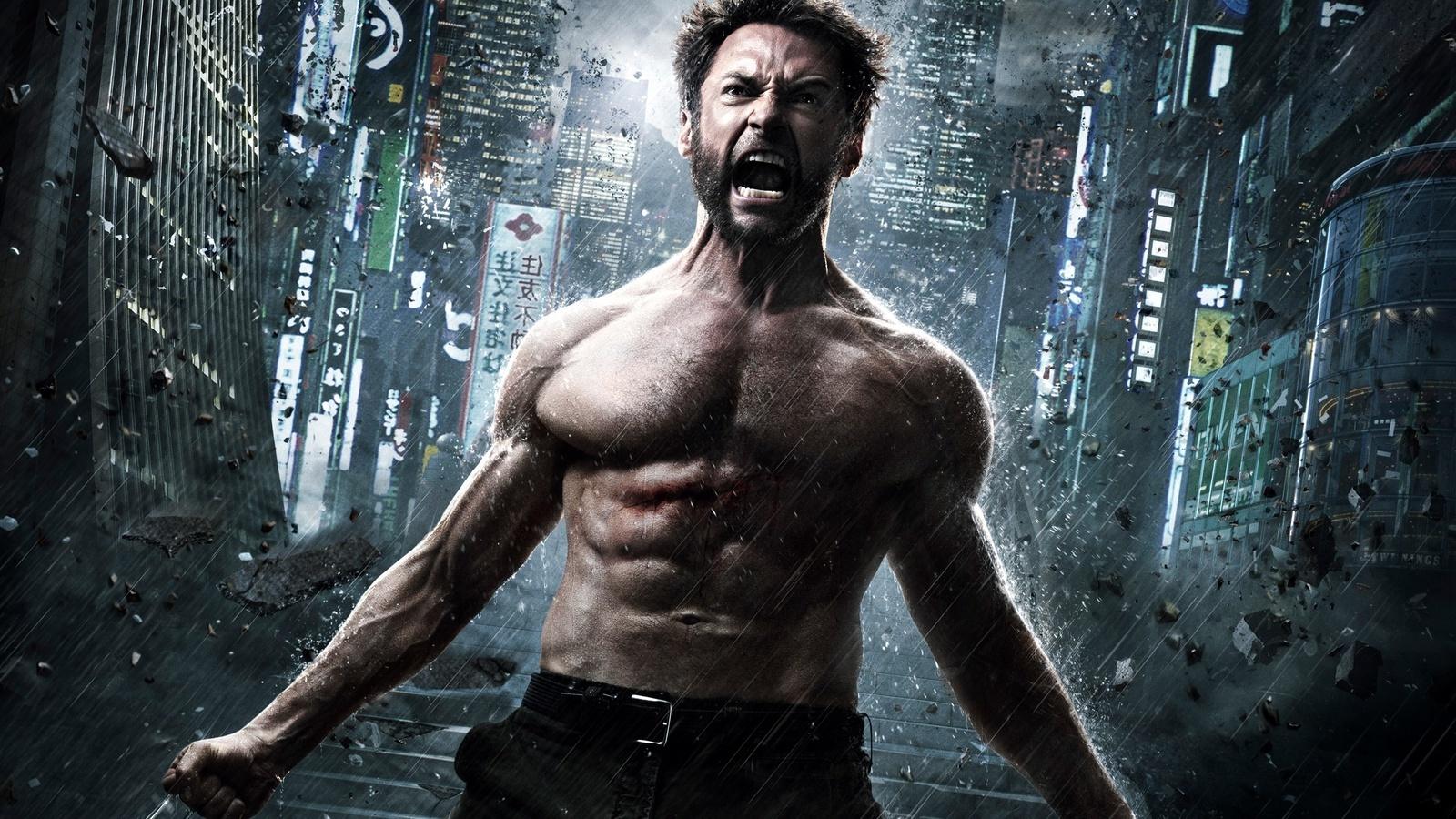 The Wolverine 2013 (1600x900)