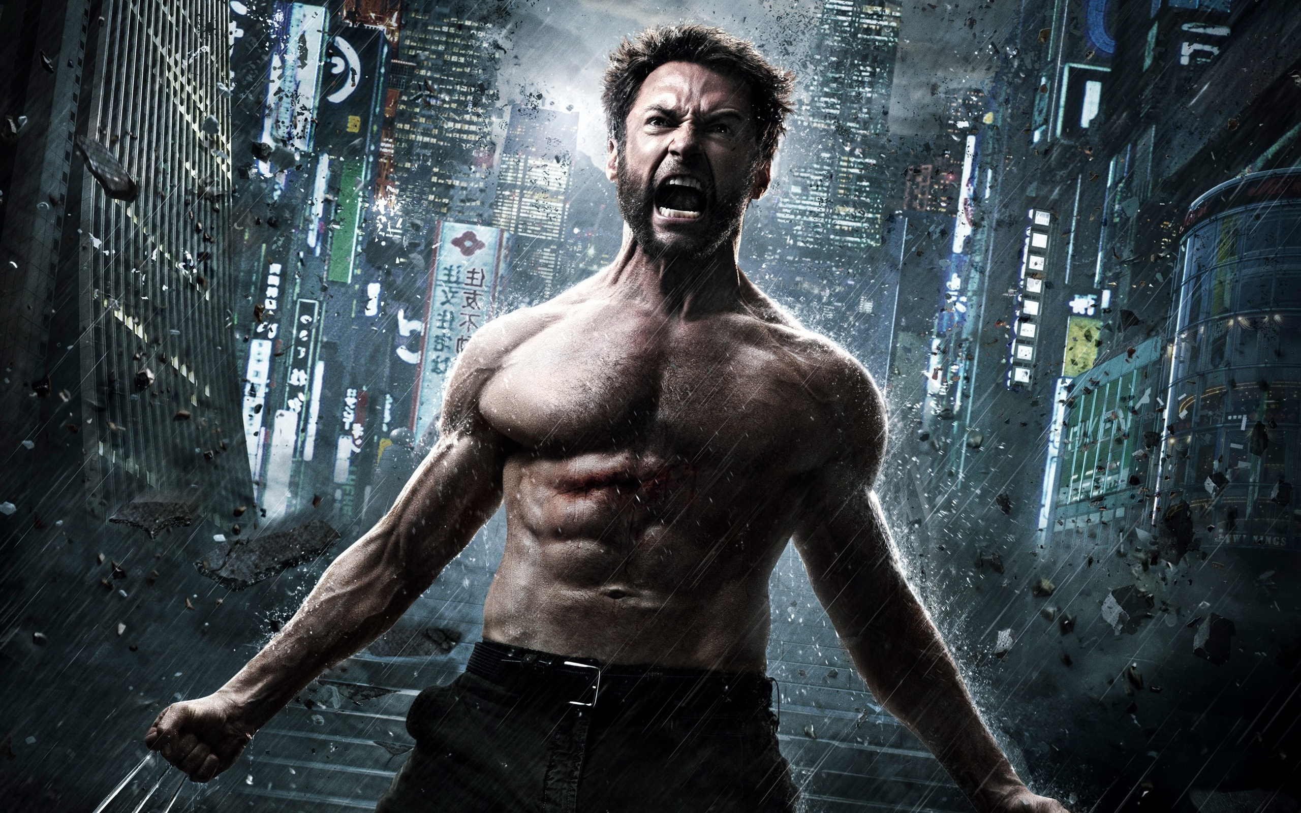 The Wolverine 2013 (2560x1600)