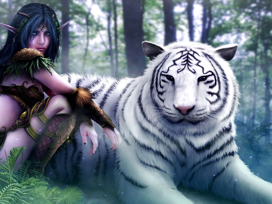 World of warcraft white tiger fantasy art elves artwork drawings (1152x864)